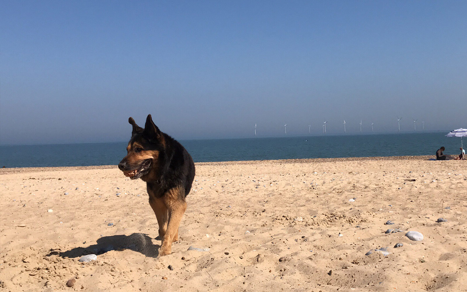 Caister Beach | Holiday Cottage in Norfolk