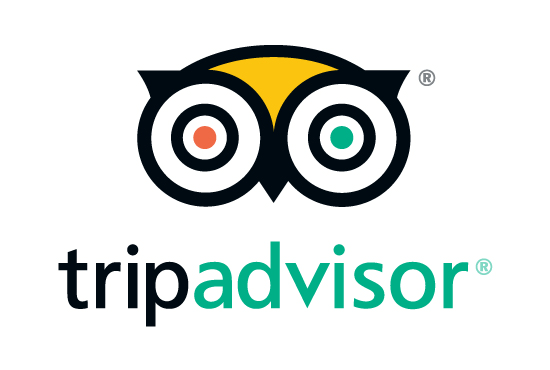 Tripadvisor Logo for Reviews
